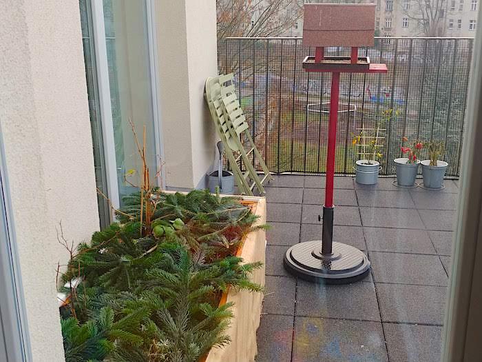 Pflanzen auf Balkon überwintern