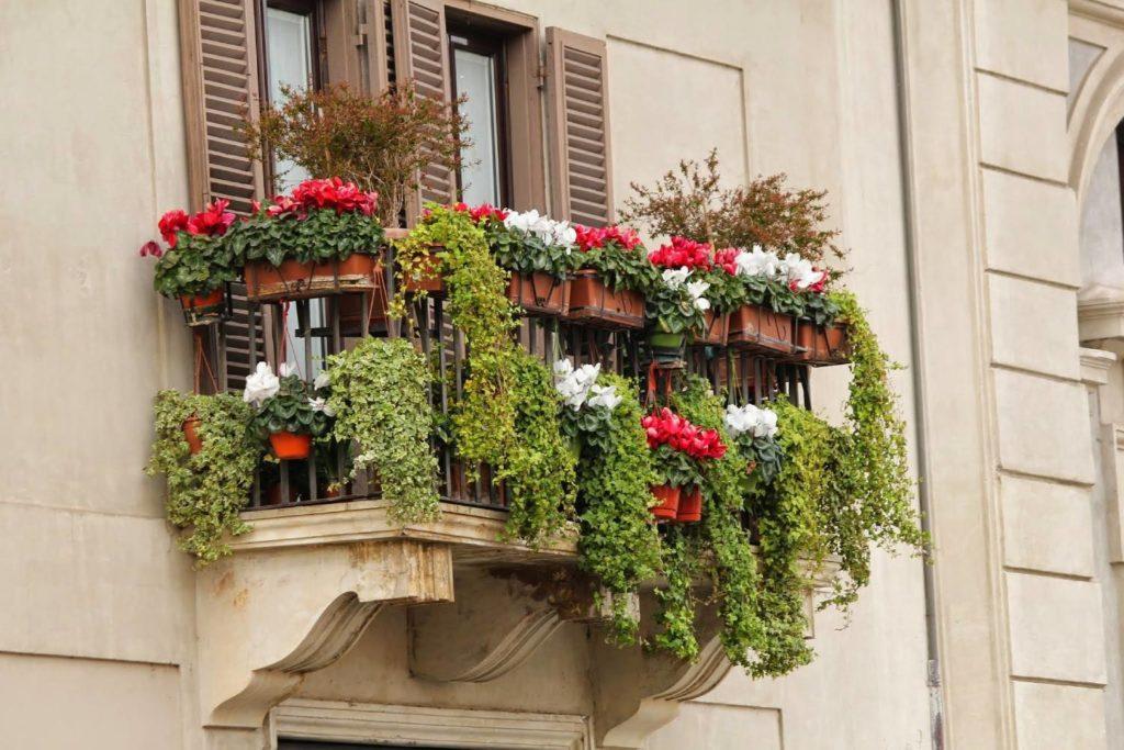 Balkon mit vielen Pflanzen