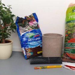 Material um Pflanze umzutopfen